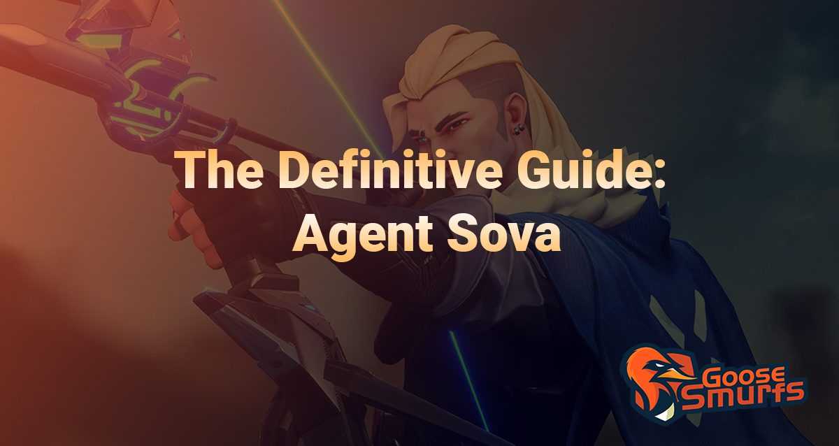 Sova guide on a gradient background