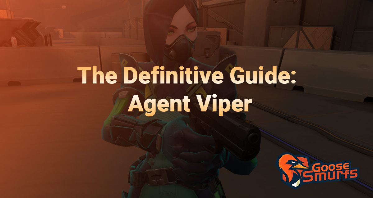 Viper guide on a gradient background